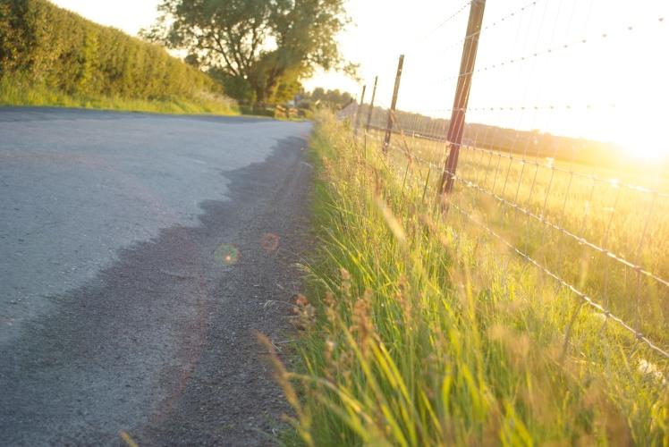 Countryside Walk - June 2013